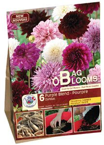 Garden Solution Bag O Blooms Purple web