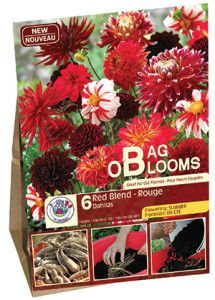 Garden Solution Bag O Blooms Red web