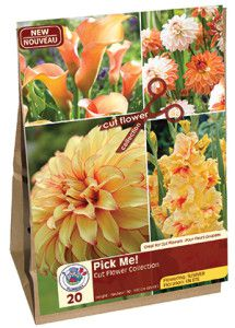 Garden Solution Pick Me Orange web