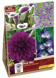 Garden Solution Pick Me Purple web