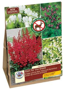 Garden Solution Stars for the Shade web