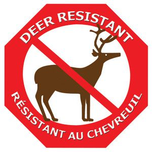deer resist sign