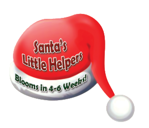 Santa's Little Helpers - Logo