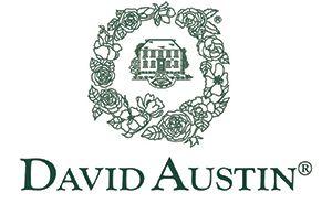 David Austin - Logo
