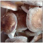 Shiitake Mushroom Culture