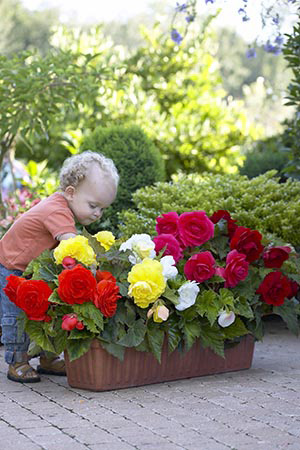Kid with a Garden Container