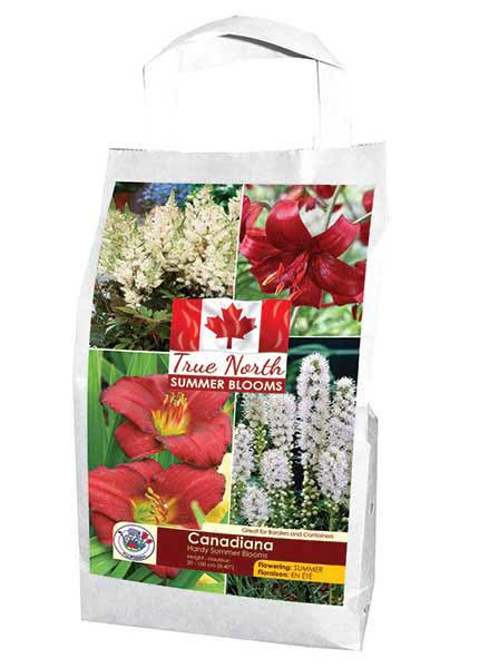 True North - Summer Blooms - Canadiana - Flowering in Summer