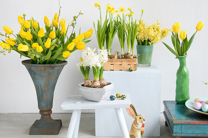 Easter Living Arrangements