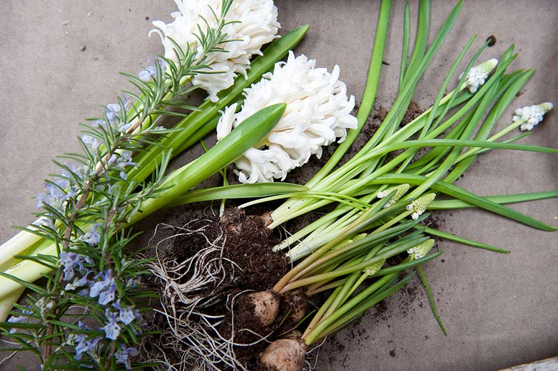 Easter Living Arrangements - 05