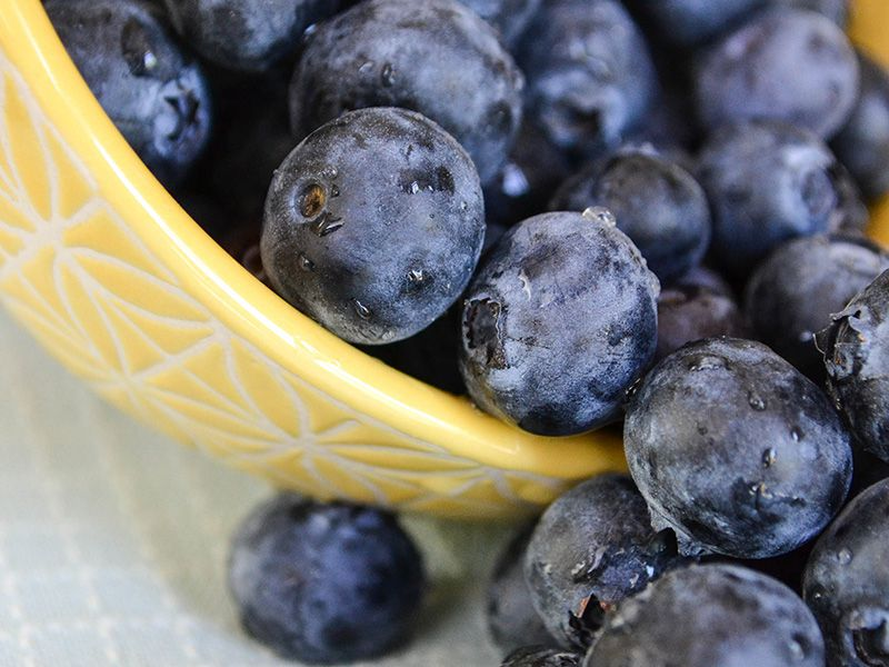 Blueberries - Berries and Cross-Pollination