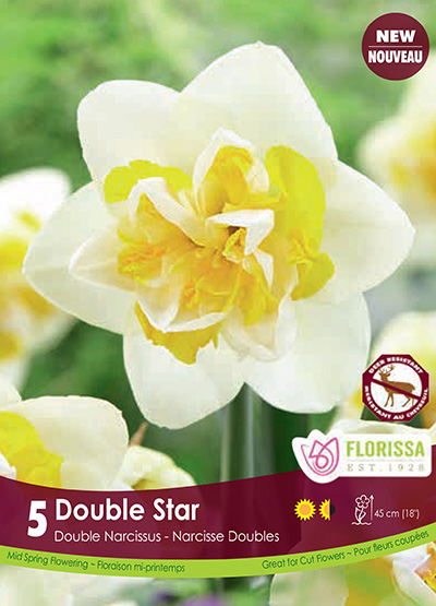 Narcissus Double Star - Fall 2018: Deer Resistant Bulbs