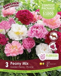 Special Marked Package - Spring 2019 Contest - Peony Mix
