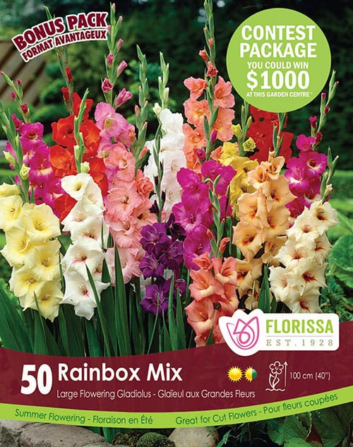 Special Marked Package - Spring 2019 Contest - Rainbow Mix