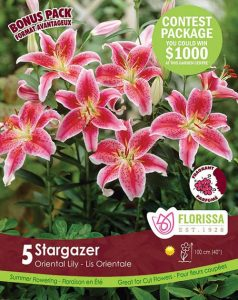 Special Marked Package - Spring 2019 Contest - Stargazer