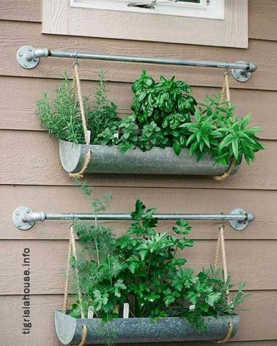 Admirable-Vertical-Gardening-Inspiration-on-A-Budget-14_name