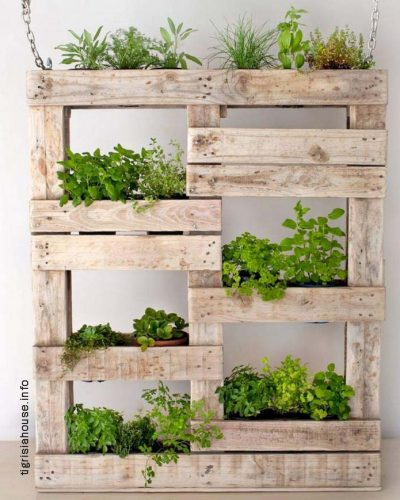 Admirable-Vertical-Gardening-Inspiration-on-A-Budget-17