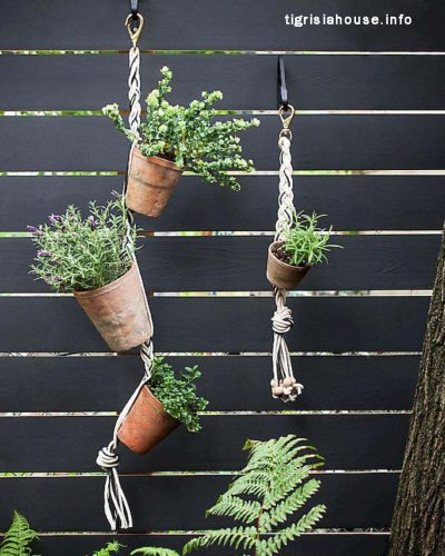 Admirable-Vertical-Gardening-Inspiration-on-A-Budget-51_name